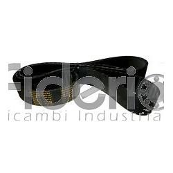 Cinghia distribuzione 141 R 254 Isoran